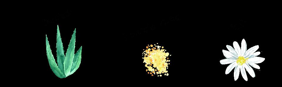 ترکیبات کرم پروپولیس